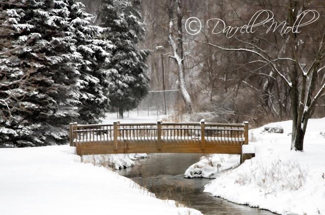 Bridge/Park