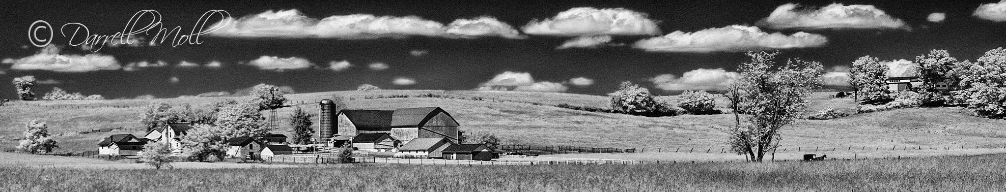 Farm & Buggy