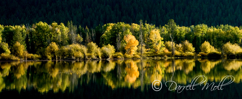 Early Fall Color Ox Bow Bend